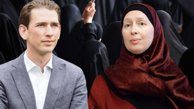 Kurz und Baghajati (Bild: APA/AFP/MOHAMMED AL-SHAIKH, APA/GEORG HOCHMUTH, Gabriele Moser)
