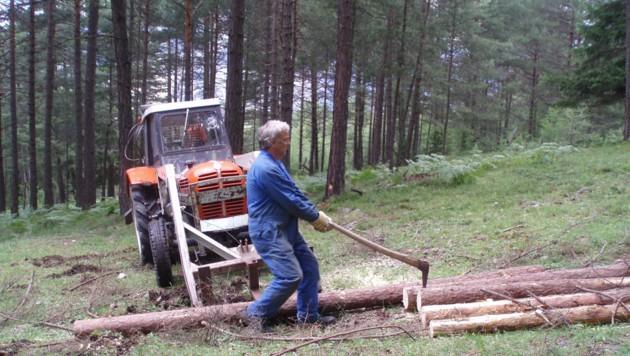 Bei Arbeiten mit Holz (Symbolbild) kommt es immer wieder zu Verletzungen (Bild: Markus Gassler)