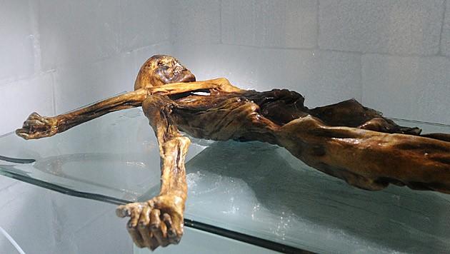 Die Mumie wurde vor 30 Jahren im Gletschereis gefunden. (Bild: APA/Robert Parigger)
