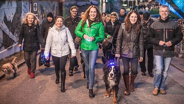 Catherina Gibel, Maggie Entenfellner und Karl Weissenbacher führten den Night Walk 2015 an. (Bild: Purina PetCare Austria)