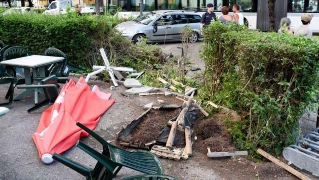 Die Lenkerin zog eine Spur der Verwüstung durch den Garten.