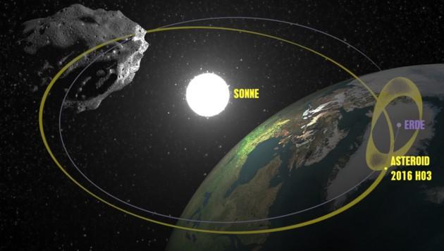 Die Bahnen von Erde (lila) und Asteroid 2016 HO3 (gelb) (Bild: NASA/JPL (Grafik), thinkstockphotos.de)