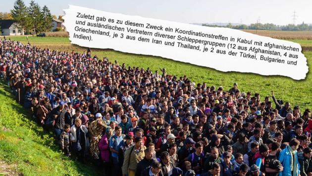 "(Bild: AFP/Jure Makovec, ""Krone"")"