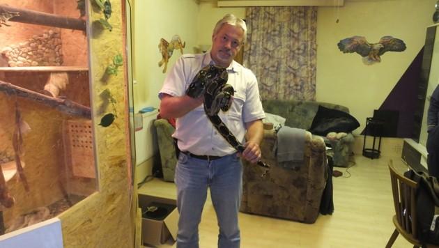 Werner Stangl mit einer der zurückgelassenen Riesenschlangen (Bild: Werner Stangl)
