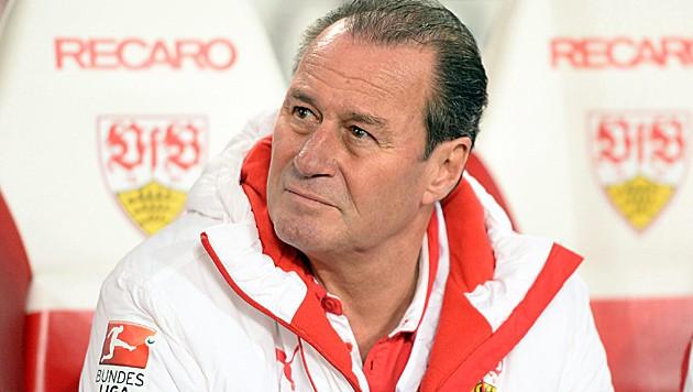 Huub Stevens als Stuttgart-Coach
