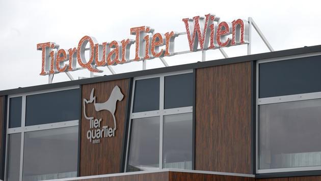 "Das ""TierQuarTier"" in Wien-Donaustadt. (Bild: APA/Hans Klaus Techt)"