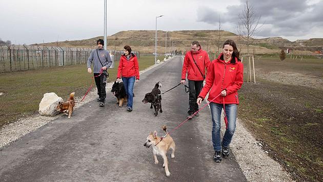 Tierpaten und Spaziergänger sind im TierQuarTier willkommen.