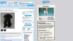 Das Inserat auf willhaben.at: Rechts wird ein Warnhinweis eingeblendet. (Bild: Screenshot willhaben.at)