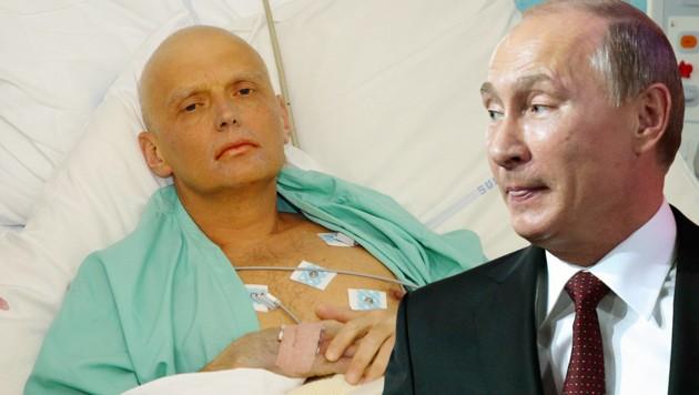 Alexander Litwinenko, Kreml-Chef Wladimir Putin (Bild: HO/AFP, ASSOCIATED PRESS)