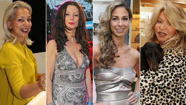 Martina Fasslabend, Sonja Klima, Yvonne Rueff, Jeannine Schiller (Bild: Kristian Bissuti, Klemens Groh, Uta Rojsek-Wiedergut)