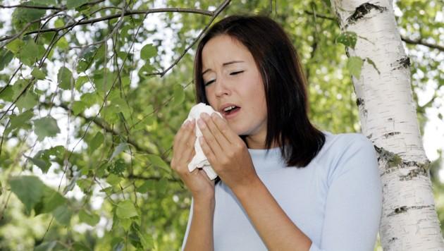 Viele Steirer leiden unter Heuschnupfen