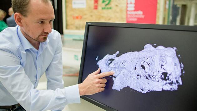 Das CT und im Hintergrund die Kiste mit dem Schädel (Bild: APA/EPA/Daniel Karmann)