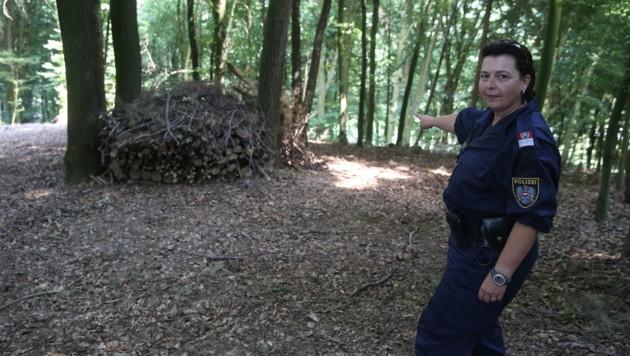 Hinter diesem Holzstoß versteckte sich der mutmaßliche Täter in einem Erdloch. (Bild: Sepp Pail)