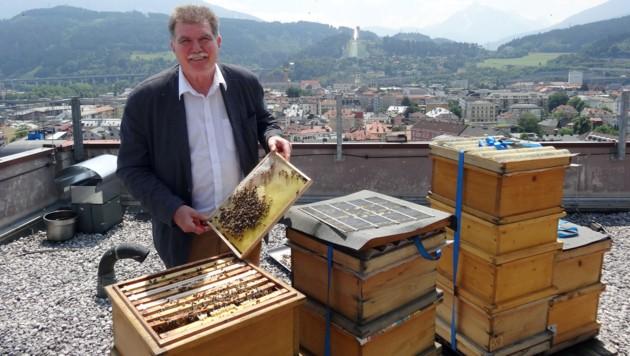 Den Bergisel im Blick, horten Hetzenauers Bienen auf dem Dach des Hotel Hilton ihren Honig. (Bild: Claudia Thurner)