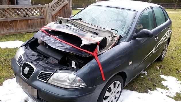 Ein 35 Meter hoher Baum traf das Auto von Frau L. - die Kaskoversicherung will dafür nicht bezahlen. (Bild: Privat)
