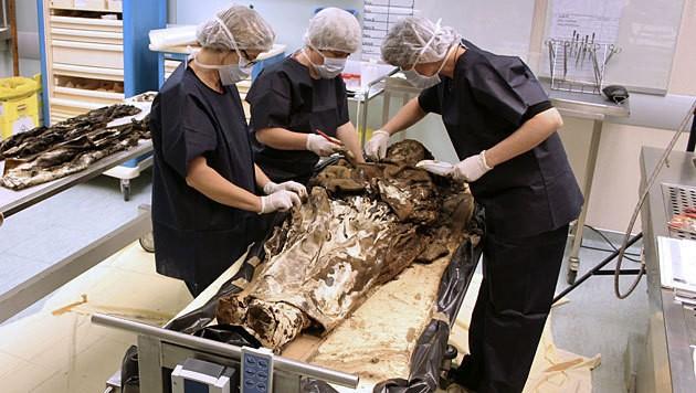 Forscher untersuchen die gut erhaltene Leiche aus dem 17. Jahrhundert. (Bild: AFP/Rozenn Colleter, INRAP)