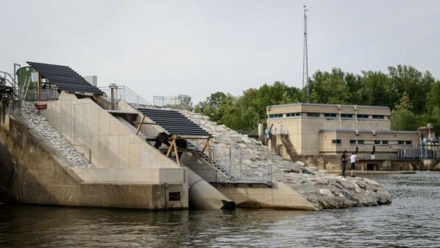 Am Mur-Sulm-Spitz in Retznei läuft seit einem Monat die Öko-Innovation im Testbetrieb. (Bild: Verbund/Johannes Wiedl)