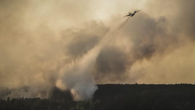 (Bild: APA/EPA/ANDREW KRAVCHENKO/POOL)