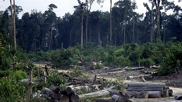 (Bild: EPA (Symbolbild))