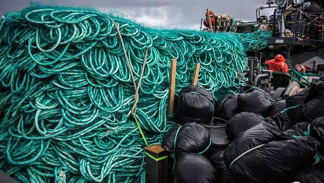 Ein Teil des beschlagnahmten Stellnetzes, mit dem Wilderer unzählige Meeresbewohner fangen wollten