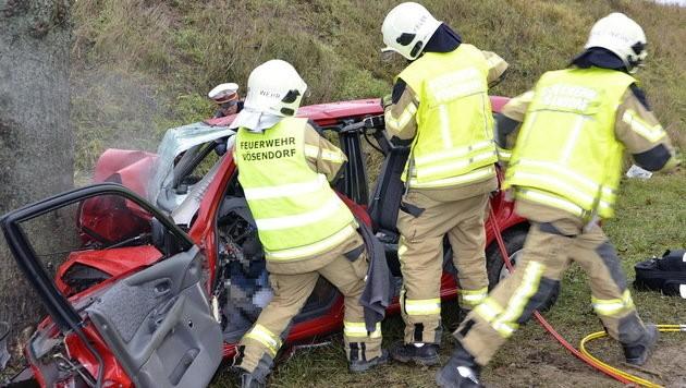 """Mittels """"Crash-Rettung"""" wurde das Unfallopfer aus dem Wagen geborgen. (Bild: Lukas Derkits / Pressestelle BFK Mödling)"""