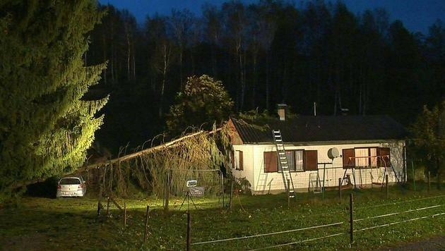 Im steirischen Ort Bleiberg stürzten zwei Bäume auf ein Wohngebäude.