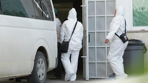 Forensiker untersuchen die Leichen aus dem Massengrab.