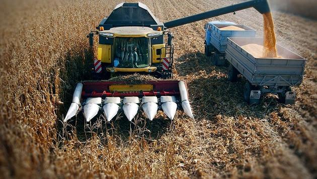 (Bild: Sandor Ujvari/EPA/picturedesk.com)