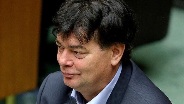 Werner Kogler (Bild: APA/GEORG HOCHMUTH)