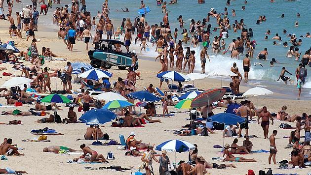 Der Bondi Beach in Zeiten vor Corona (Bild: dapd)