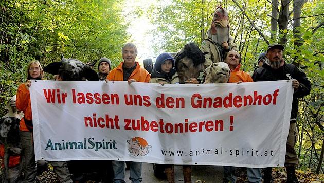 (Bild: Animal Spirit)