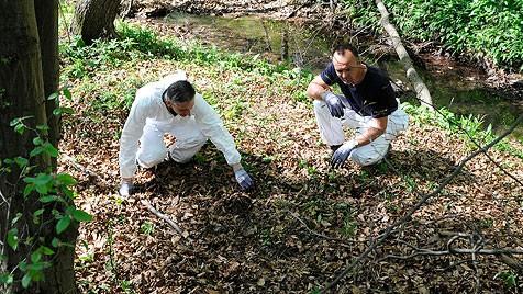 Bekanntschaften in Sulz im Wienerwald - Partnersuche