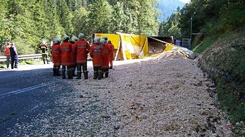 (Bild: Freiwillige Feuerwehr Waidring)